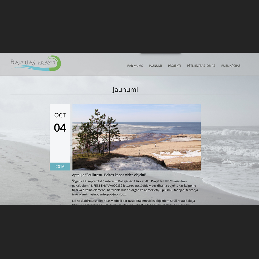Baltic coasts website design and development